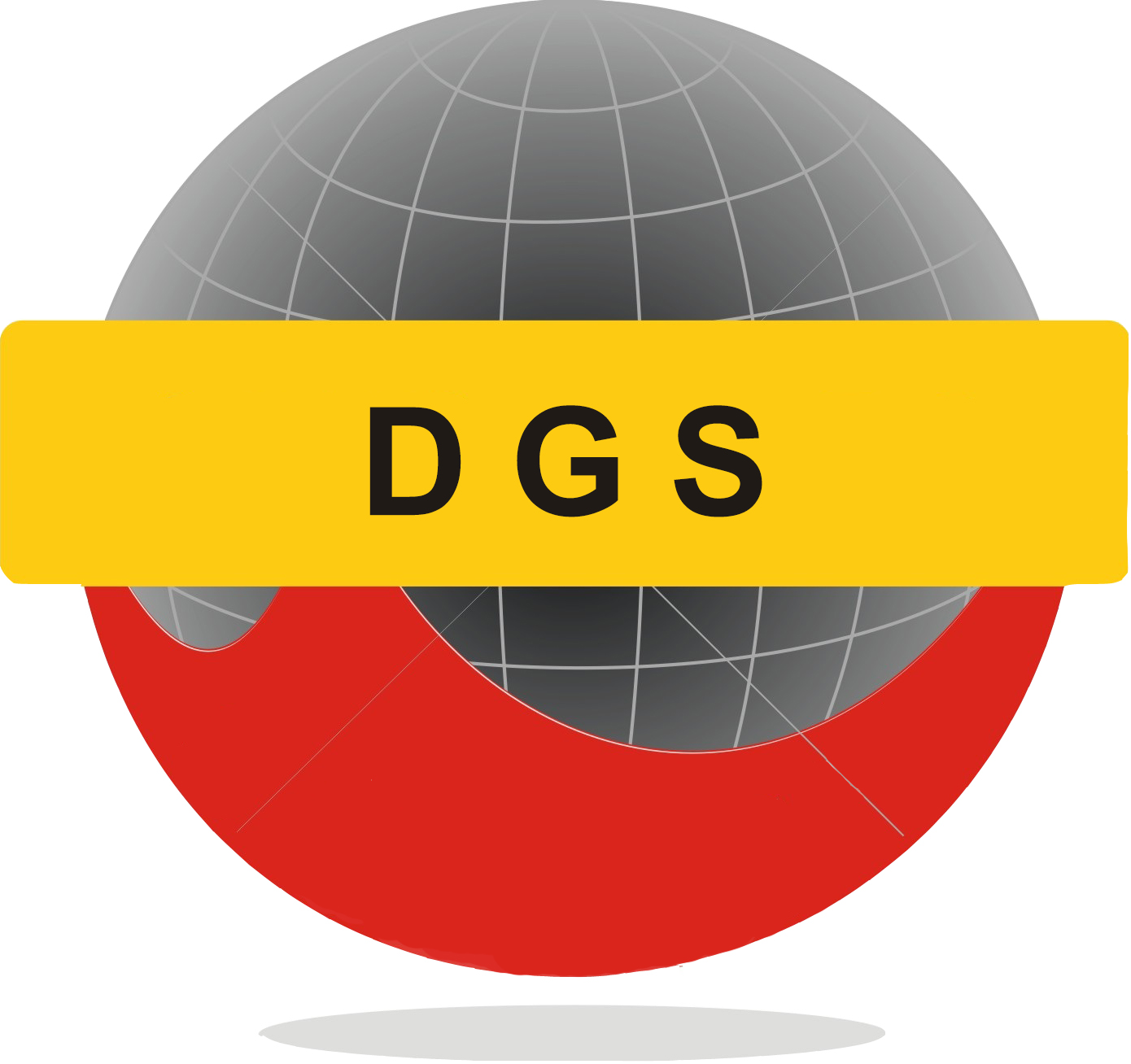 About DGS